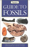 Guide to Fossils (Firefly Pocket series)